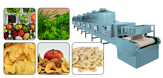 Microwave Assisted Drying of Food and Fodder